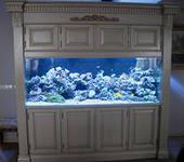 изготовление морских и пресноводных аквариумов с заселением и обслугой