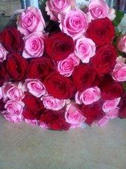 Цветы,  букет роз 51 шт. Доставка по Алматы