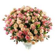Свежие цветы отличного качества по выгодным ценам к любому поводу!